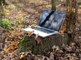 Praca zdalna jednym ze sposobów na zarabianie pieniędzy online