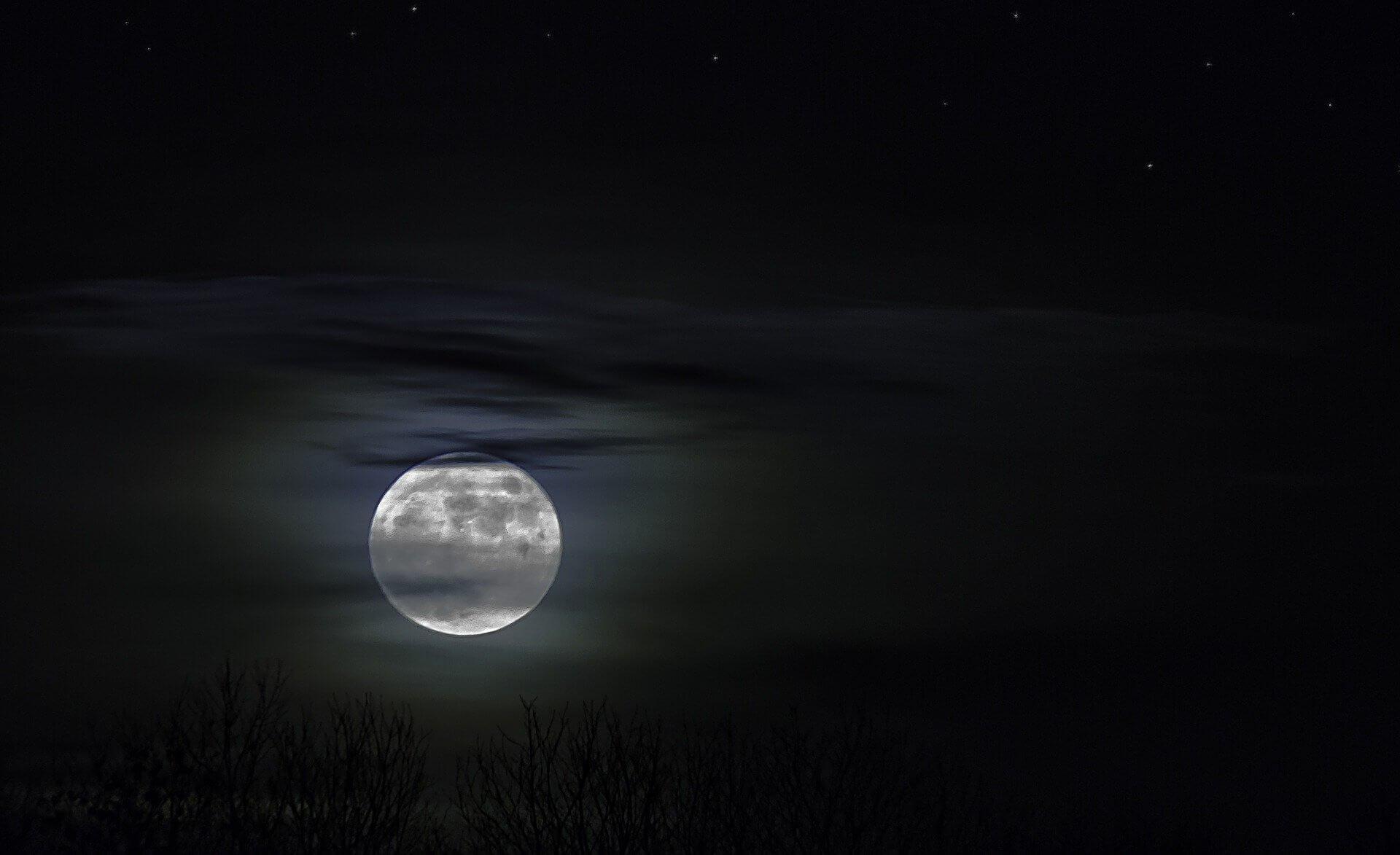 Midnight Sun, stephenie meyer, zmierzch, książka, premiera, literatura, wydawnictwo, wydawnictwo dolnośląskie, słońce w mroku, wampiry, horror, romans, literatura młodzieżowa, kristen stewart, robert pattinson, ballada ptaków i węży, książki, zaćmienie, księżyc w nowiu, przed switem